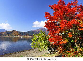 Lake kawaguchi in autumn season