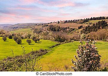 hills of Tuscany, Italy