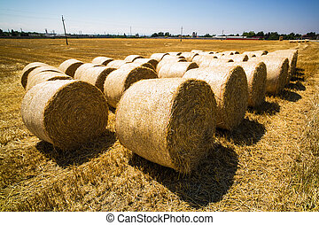 bales of straw and cereals on a field