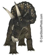 Dinosaur Diceratops - 3D digital render of a dinosaur...