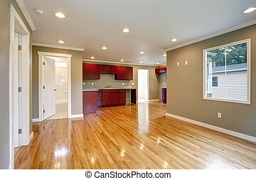 NEwly remodeled kitchen and living room.