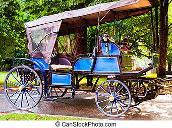 chariot - picture of a beautiful chariot