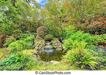 Beatiful exotic garden with pond - Landscape idea Small man...
