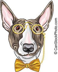 vector funny cartoon hipster dog Bullterrier - hipster dog...
