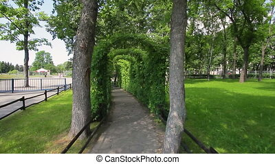 Garden alley, steady smooth motion, sunny day, footpath