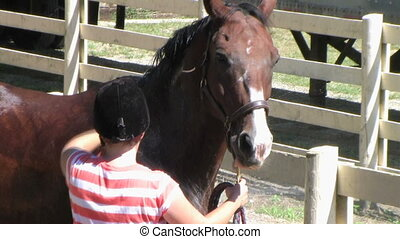 Horse Being Groomed - Horse getting bath after training