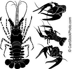 langosta, cangrejos de río