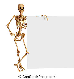 Human skeleton with sign - 3d rendered illustration of Human...