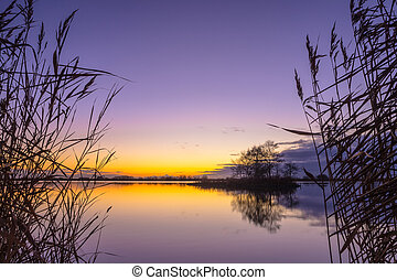 Silhouette of Reed with serene Lake during Sunset - Blue and...