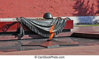 Tomb of the Unknown Soldier with burning flame in Alexander...