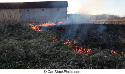 Burning dry grass - Fire in dry uncultivated grass near farm...
