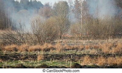 Burning dry grass - Fire in dry uncultivated grass between...