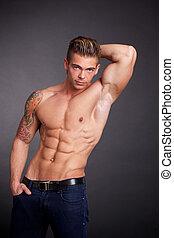 肌肉, 男性, 模型