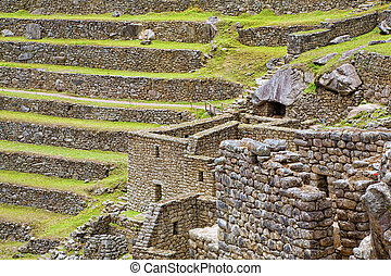 Terraces of Machu Picchu - Terraces and ruins of ancient...