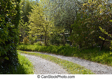 Tree-lined driveway - Tree-lined stone path leads around a...