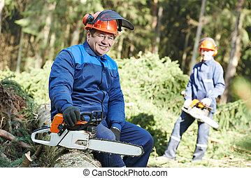Leñador, trabajador, Chainsaw, bosque