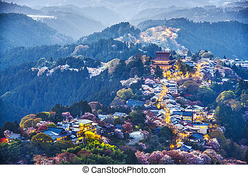 Yoshinoyama, Japan at twilight during the spring.