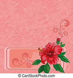 Floral background, hibiscus and contours