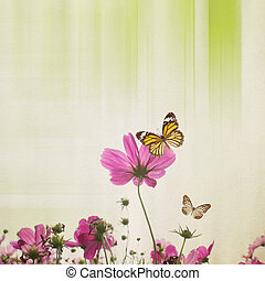 Cosmos Flower Background With Butterfly
