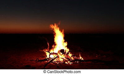 Nighttime campfire - Outdoor wood campfire burning brightly...
