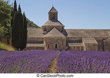 Abbey Senanque Provence, France - Famous Abbey Senanque with...