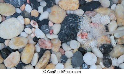 Pebble stones - Fountain plash on pebble stones with...
