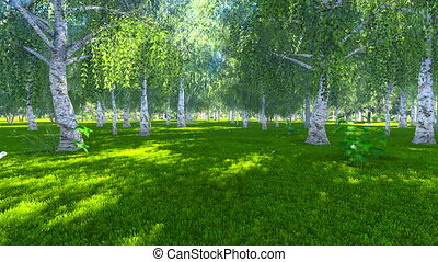 Sunny day in the birch grove - Realistic three dimensional...