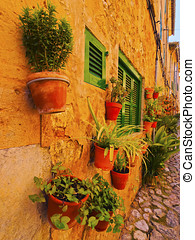 Flowers in Valldemosa on Majorca - Flowerpots on the wall of...
