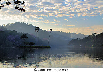 Small island in the Kandy lake, Sri Lanka - Small island...