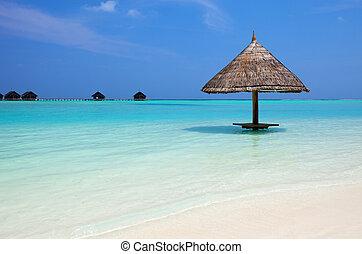Beautiful tropical beach at Maldives - Tropical thatch...