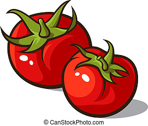 Tomatoes - Vector illustration of ripe tomatoes, isolated on...
