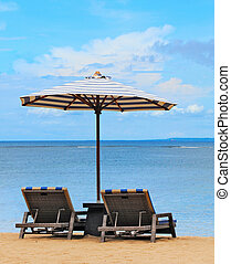Loungers on the shores of the beach