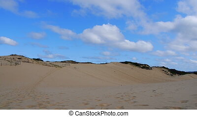 sandy beach of Australia