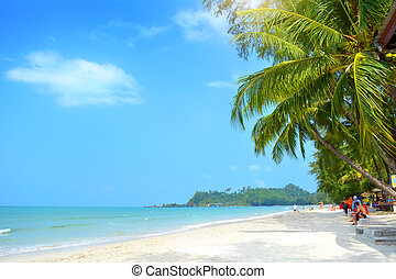 Klong Prao Beach, Koh Chang - Beach with palm trees. Klong...