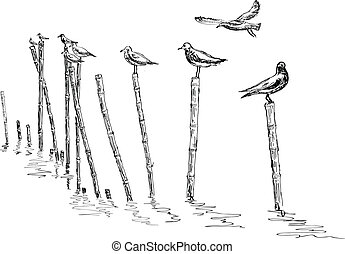 seagull standing on the pole - hand sketch seagull standing...
