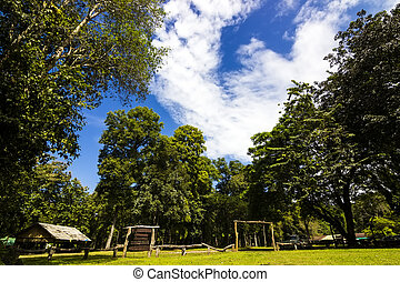 Bua Tong Forest National Park - View at Bua Tong Forest...
