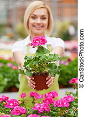 This flower is yours! Beautiful young woman in apron...