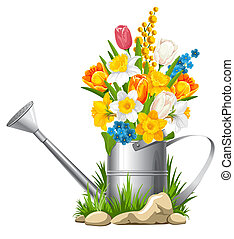 Flowers in watering can - Fresh spring flowers in watering...