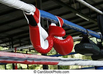 A pair of Muay Thai boxing gloves
