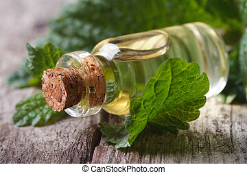 Aromatic oils Lemon balm in a glass bottle on old table -...