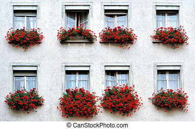 windows with  - a typical switzerland windows with flowers