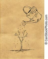 Watering Plant sketch on Paper