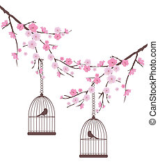 bird cage - vector bird cages in the cherry blossom