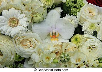 mescolato, bianco, fiori, matrimonio