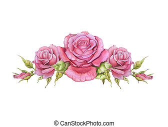 Watercolor horizontal vignette of roses on a white...