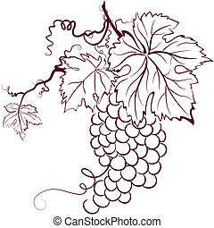 uvas, com, folhas
