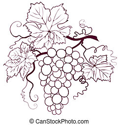 Grapes With Leaves, editable vector illustration