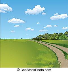 campo, camino, rural, escena
