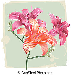 Lily Flowers On Grunge Background, editable vector...