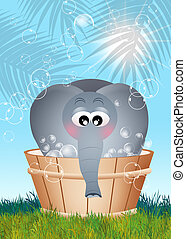 elephant bathing